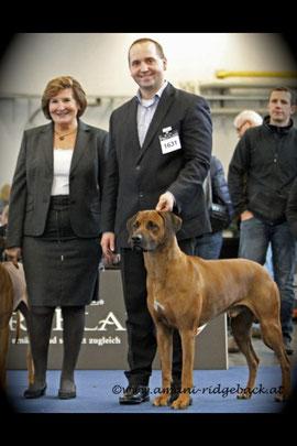 Richterin Frau Blaha (A), Markus Winkler und Goldi