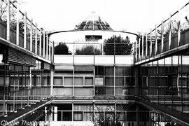 Where I worked..Zurich Academy Germany