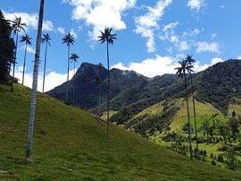 MTB Woche Tour Valle de Cocora Fahrrad Kolumbien