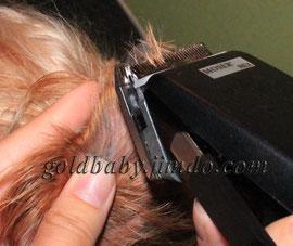 подстричь ушко йорку