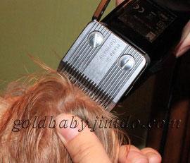 бреем ушко йорка