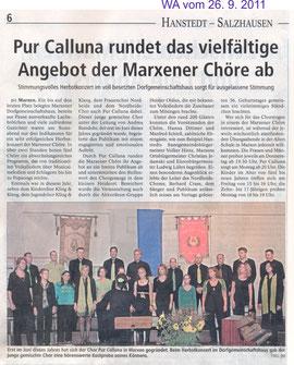 Bericht Herbstkonzert 2011
