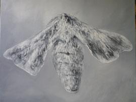 2011, bombyx, huile, 1x1m