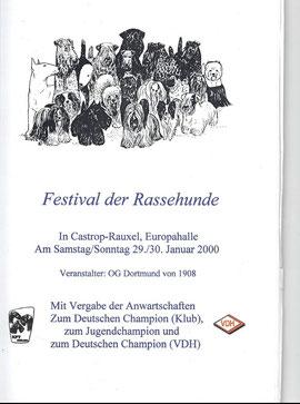 Erste Ausstellung