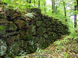 Die Scheuchenmauer bei Langburkersdorf