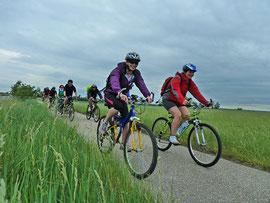 Die Radwallfahrt im Mai 2012 ging um den Neusiedler See