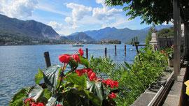 Am Dienstag besuchten wir die Borromäischen Inseln im Lago Maggiore, Foto zeigt den Blick von der Isola Bella auf den See.