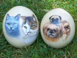 Straußeneier mit Hund und Katz