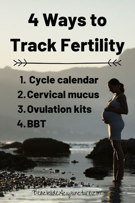 4 Ways to Track Fertility - Pregnant woman standing by mountainside lake