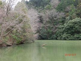 *鈴ヶ滝湖