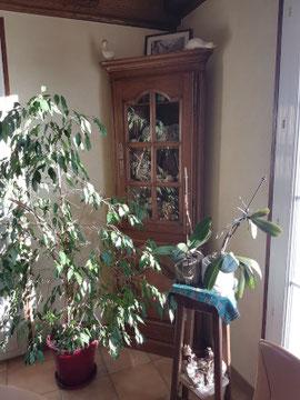 Vers Rénovation artisanale meuble d'angle vitrine Haute Savoie