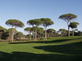 Cornelia Golf, Belek