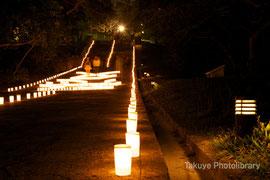 弁財天堂から久慶門へ抜ける遊歩道