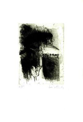 incisione originale di Luiso Sturla (misura lastra 195x145 mm)