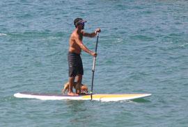 standu up, paddleboard, rincon, puerto rico