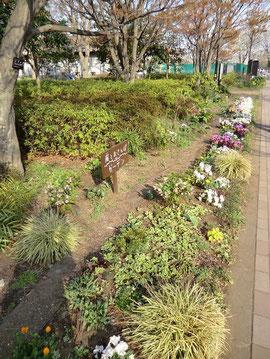 ●風のお散歩ガーデンという素敵な名前の場所も