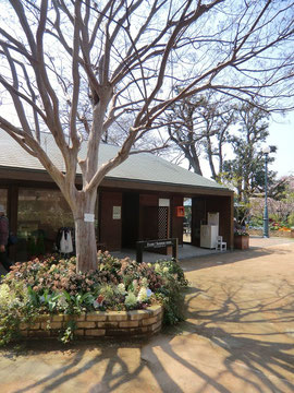 ●中に入り、大きなサルスベリの木の横イベントセミナールームのところにスタンプがありました