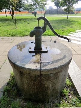 ▲懐かしいタイプの手押しポンプの井戸
