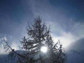 Winter-Sonnenwende