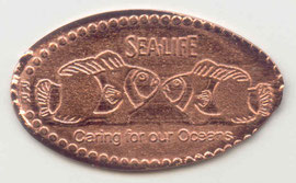 Hannover Sealife - motief 2