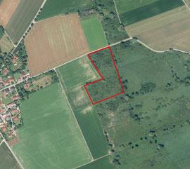 LBV Donau-Ries hat im Landkreis Fläche die der Natur gehört und nicht Bebaut oder Zerstört werden kann.