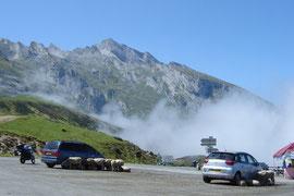 Col du Soulor (1474m) à 10 km de l'Aubisque. Ici, ce sont les moutons qui cherchent l'ombre.