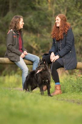Einzeltraining - Hundetrainer Straelen und Duisburg - Hundeschule Duisburg Straelen Niederrhein Ruhrgebiet - Hundetraining Clickertraining Clicker Markertraining