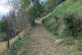 N°40/ Le début du Chemin Vieux d'Eygun et ses bordures négligées