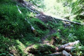 N°28/ Vu d'en bas, la ligne de marche semble très hésitante à travers l'amoncellement consécutif à l'avalanche