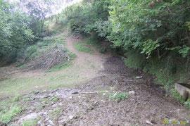 N°1/ La jonction du nouveau sentier fauché au-dessus de la propriété Mirandette avec la Fontaine de Serre Latte : l'eau essentielle pour le bétail !