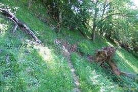 N°20/ Un trou à réparer sur le Chemin des Jaupins entre Mirande et Moutengou, suite à l'arrachement d'une souche en 2009.