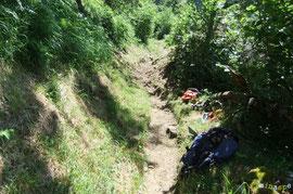 N°43/ Après le dégagement de cette souche au-dessus de Beloute : la voie est sécurisée pour les ânes de tous poils !