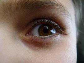 Schnelle Augenbewegungen verknüpfen die beiden Gehirnhälften und ermöglichen die Stress-Verarbeitung