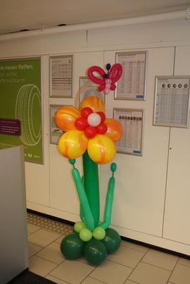 Mr. Balloni. ch, Ballonblume,Deko, Raumdeko, Firma, Betrieb