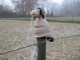 Unser happy Hippo !!