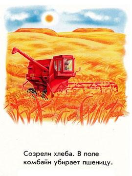 В поле комбайн убирает пшеницу