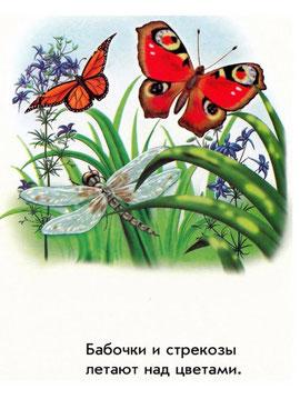 Бабочки и стрекозы летают над цветами
