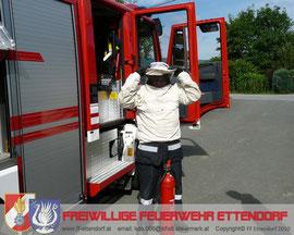 Einsatz Insektenbekämpfung 29.07.2010