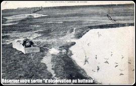 Découverte des oiseaux en Baie de somme au hutteau