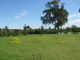 le jardin de pétales