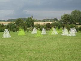 le jardin de topiaires