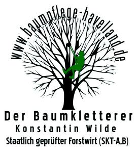 Baumpflege Falkensee