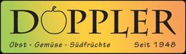 Logo Firma Doppler