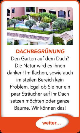 "Button verlinkt zu ""Dachbegrünung"" der Uttendorf Bedachungen GmbH."
