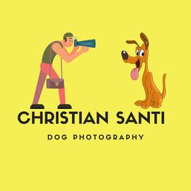 servizi fotografici per animali domestici