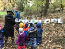 Die Arbneit mit Kindergruppen im Wald stellt die Hauptaufgabe dar