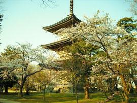 国分寺三重塔は、江戸時代の作です。