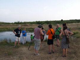 Sessió pràctica a la Balsa Silvestre