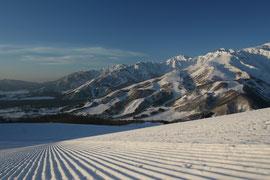 http://www.tsugaike.gr.jp/snow/