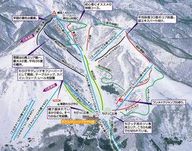 http://hakubacortina.jp/ski/